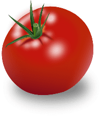 Tomato/помидор
