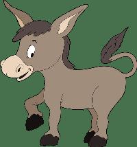 donkey/осел