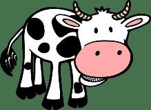 cow/корова