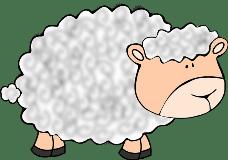 sheep/овца