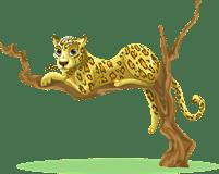 leopard/леопард