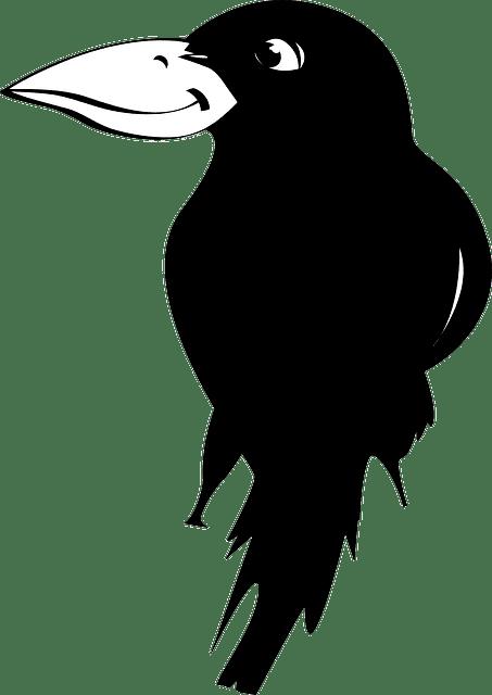 crow - ворона