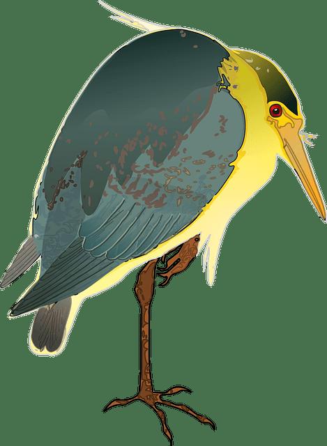 цапля - heron