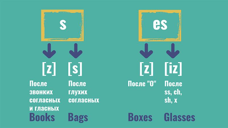 окончания s и es