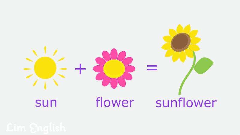 сложные слова в английском языке